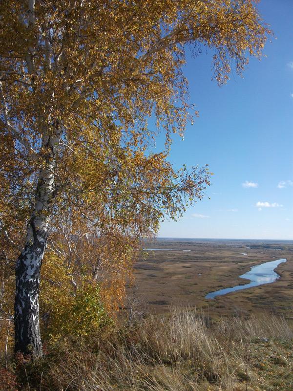 Обед в полях, вид на на пойму р. Обь г ...: www.indor-most.ru/photos/745